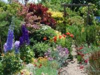 จัดสวนสวยโรแมนติก จัดสวนระเบียงขนาดเล็กของบ้านสไตล์วิคตอเรีย